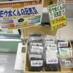 フレッシュ黄桜02