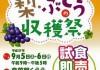 梨ぶどう収穫祭