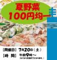 s_夏野菜100