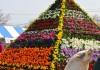 花ピラミッド