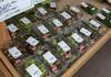 サンフレッシュ山菜