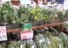 直売所 春 野菜 菜の花