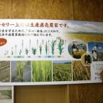 お米と花の生産直売 ナーセリー上野02