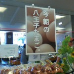 八王子滝山03